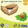 Pueraria Mirifica Powder / Lobed Kudzuvine Root Extract / 30%-60% Puerarin, 40%-90% Isoflavones