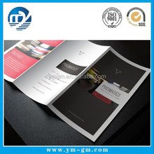 Cheap colorful sample promotional DL flyer printing