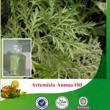 100% Natural & pure artemisia annua oil, factory supply artemisia oil, wormwood essential oil