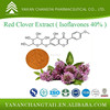 Herb Extract Powder Red Clover Extract Isoflavones 40%
