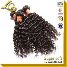 Free Sample Cheap Curly Indian Virgin Hair&4 Pcs Indian Virgin Hair Curly&Virgin Indian Deep Curly