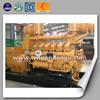 International standard 10-600kw High efficient biogas equipment/ small biogas plant