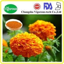 natural marigold extract/ lutein powder(marigold plant extract)/ lutein marigold extract