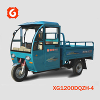 High quality/Cheap price OEM electrical/battery-powered passanger truk trike vehicle