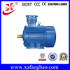 740r/min 45kW Three-phase asynchronous ac induction explosion-proof motor china motor