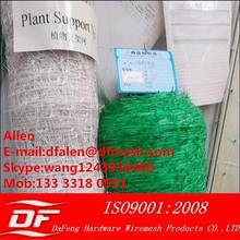 plastic support netting/Bean & pea nets/vegetable support mesh