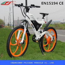 FUJIANG electric bicycle, used electric bicycle hub motor, electric chopper bicycle with EN15194