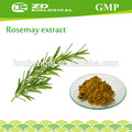los alimentos de grado extracto de romero el ácido rosmarínico en extractodehierbas