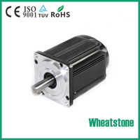 Electric BLDC motor controller for electric vehicle