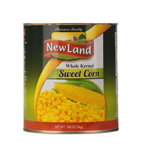 china brand factory frozen sweet corn