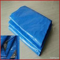 Blue tarpaulin tote bag