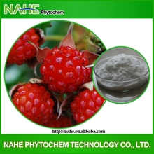 health food plant extract Raspberry extract