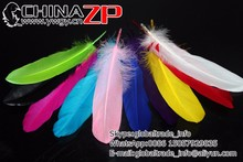 China ZP crafts Factory wholesale in Stock Dyed colored Goose Loose Feathers