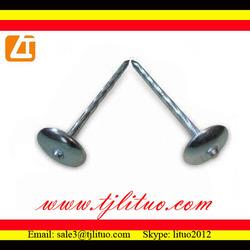 plain shank electric galvanized big round umbrella head roofing nail