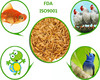 High Protein Freeze dried mealworm, dry chicken food mealworm