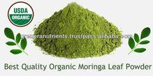 a 1 calidad de hojas de marango en <span class=keywords><strong>polvo</strong></span> para la venta