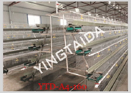 Chicken Breeding Cage (Professional manufacturer / good quality and best price )