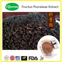 100% Pure Natural Fructus Psoraleae Extract/Psoraleae Extract powder 10:1