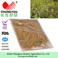 special vegetable high quality c
