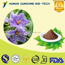 Natural Health Supplements Herbal Remedies Belladonna Herb P.E.