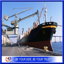 China mainland trustworthy sea freight/sea Logistics to SHARJAH