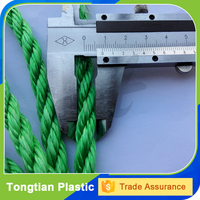 manufacture nylon bungee cord with factory price
