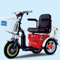 Popular Convenient High Quality Electric Tricycle Pedal Assisted With Simple Roof For Disabled