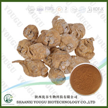 chinese ISO manufacturer wholesale maca herb dry root extract powder