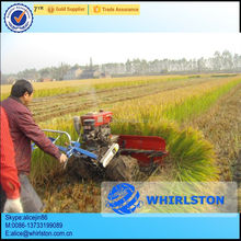 Hot sell in Pakistan mini rice wheat cutting machine/mini wheat cutting machine/mini rice cutting machine