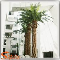 Wholesale artificial outdoor palm trees tissue culture date palm prices electric palm tree