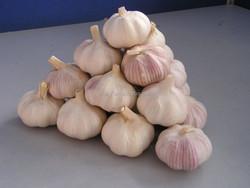2015 Chinese bulk fresh white garlic for sale