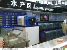 industriali di piccole macchine per la produzione di ghiaccio per asciugare ghiaccio in scaglie