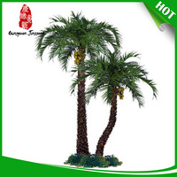 Hot selling yellow evergreen trees