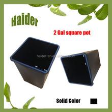 Hot 2 Gallon A Square Black PP Plastic Plant Flower Pot Tray