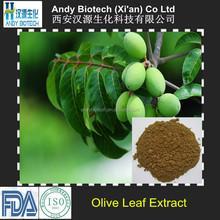 10% Hydroxytyrosol Hot Selling Olive Leaf Extract Powder
