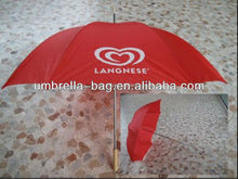 New Fishing Umbrella in 2012