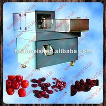 plum/cherry/olive pit remove machine 0086-13523521812