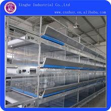 granja de pollo jaula de equipos para el cultivo de pollos de engorde