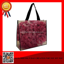 The queen of quantity World-wide renown aldo bag