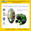 GMP Manufacturer Supply High Quality Siberian Ginseng Extract