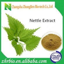 Professional Manufacturer Supply Natural Extract Nettle Root Extract 10:1