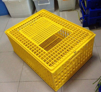 plastic poultry transport crate/chicken transport box lydia chang 0086.15965977837