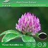 Pure Trifolium pretense Powder,Trifolium pretense Herbal Powder,Red Clover Plant Powder
