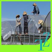 UV stabilized polyethylene film ,UV stabilized polyethyle rain covering for farm,uv protection clear plastic rolls for greenhoue