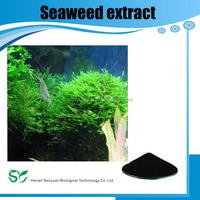 Huminrich Soluble Seaweed Extract Algas Marinas Peru