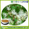 Alibaba china gold supplier top quality triterpene glycosides , cimicifugoside