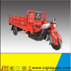 Gasoline Cargo Tricycle/3 Wheeler With Cargo Box