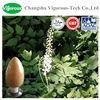 100% Natural Black Cohosh Extract/Black Cohosh Extract powder/black cohosh p.e powder
