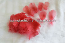 Soft goose feather in coral color/goose down