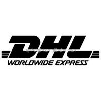 cheap Door to door services from China to VENEZUELA by DHL --SKYPE:lxfm2005